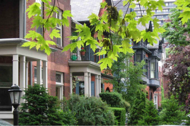 Heritage neighborhoods: what is the value of a tree-lined boulevard?